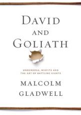 DavidandGoliath cover
